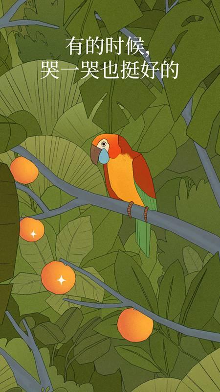 孤独的鸟儿游戏下载